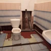 Комната, 14.00 м², 1/5 этаж