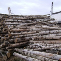 Продам дрова.