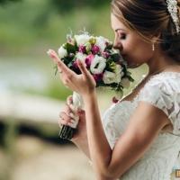 Организация свадеб и выездных регистраций