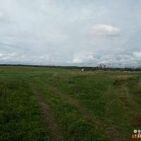Продам земельный участок в  Борковке