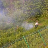 Обрабатываем от клещей комаров дачные участки в Выксе