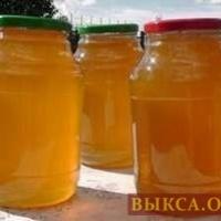 Мед с собственной пасеки 3л.-1700